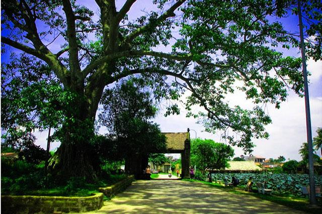 Gate Duong Lam